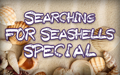 SEARCHING FOR SEASHELLS SPECIAL